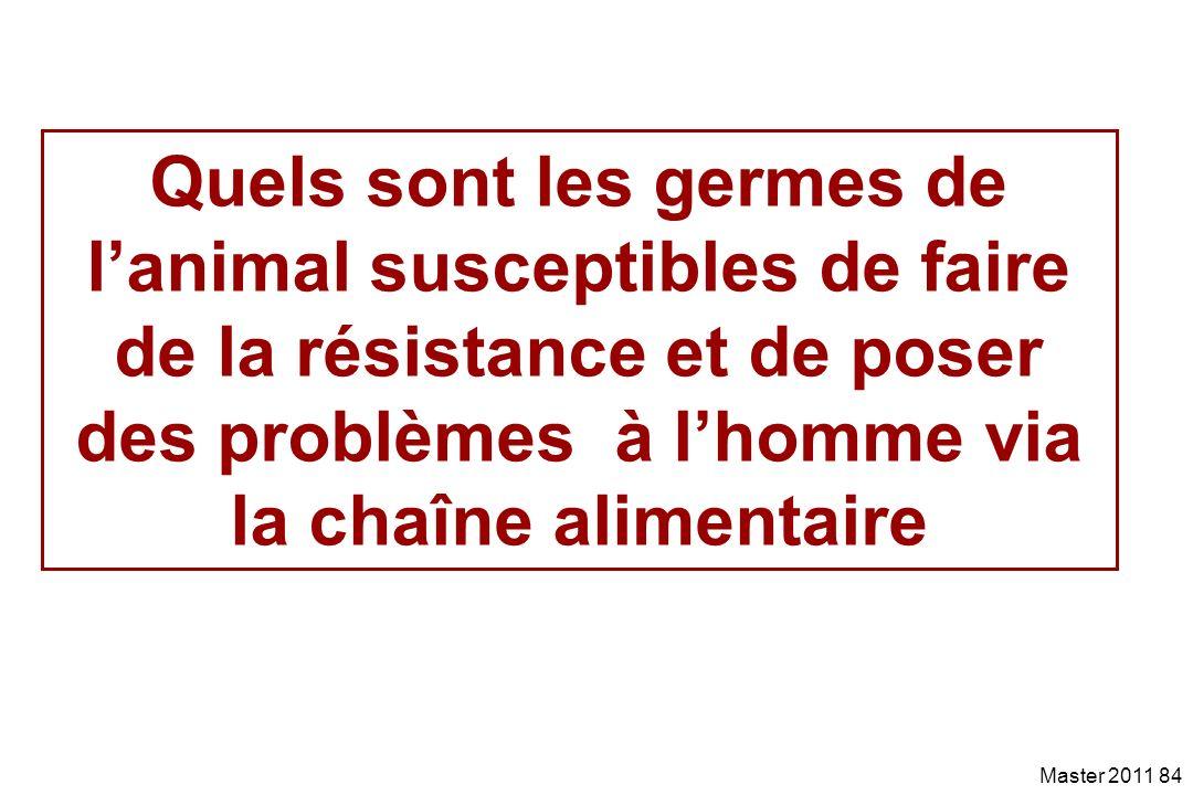 Quels sont les germes de l'animal susceptibles de faire de la résistance et de poser des problèmes à l'homme via la chaîne alimentaire