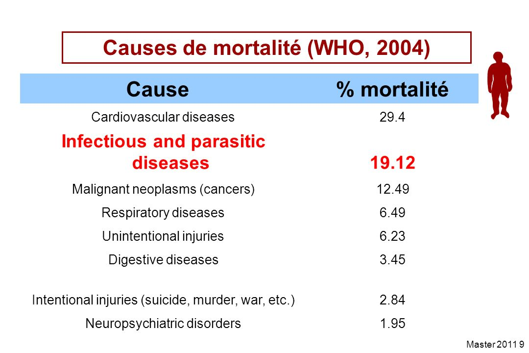 Causes de mortalité (WHO, 2004)