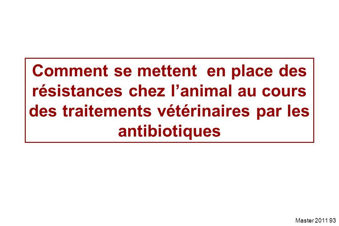 Comment se mettent en place des résistances chez l'animal au cours des traitements vétérinaires par les antibiotiques