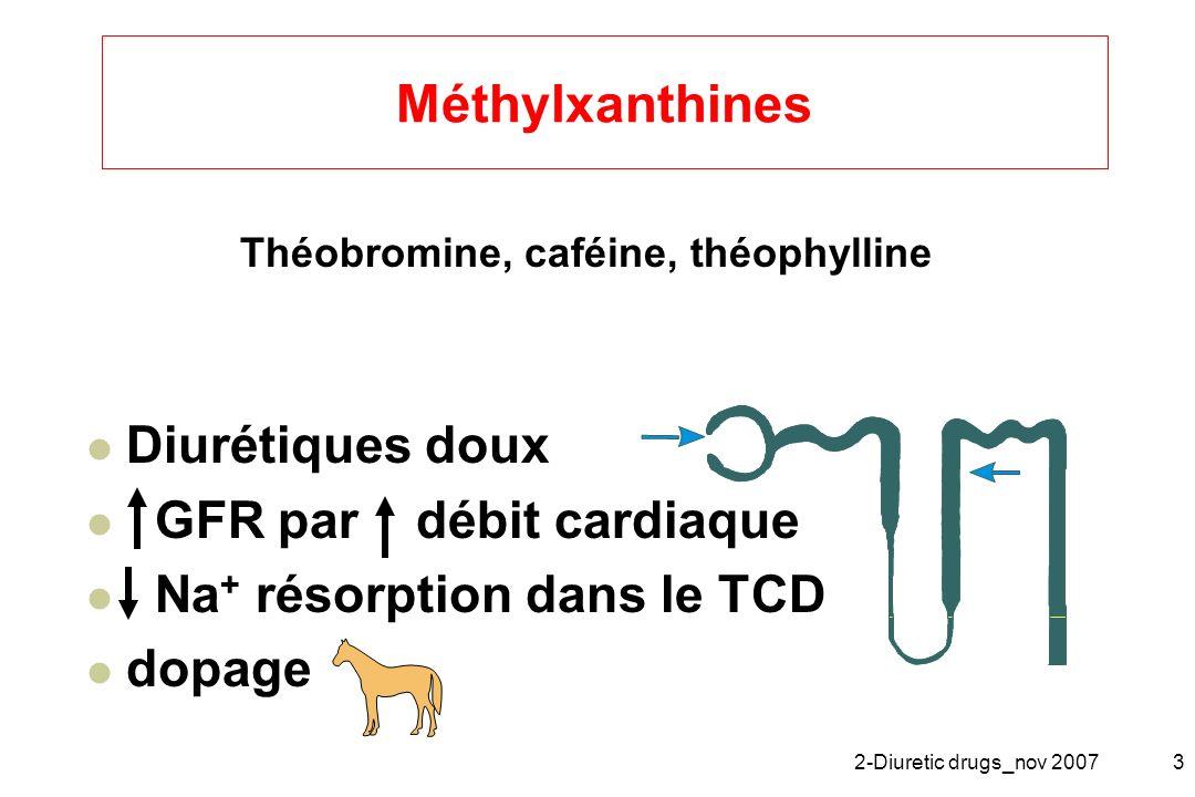 Méthylxanthines Diurétiques doux GFR par débit cardiaque
