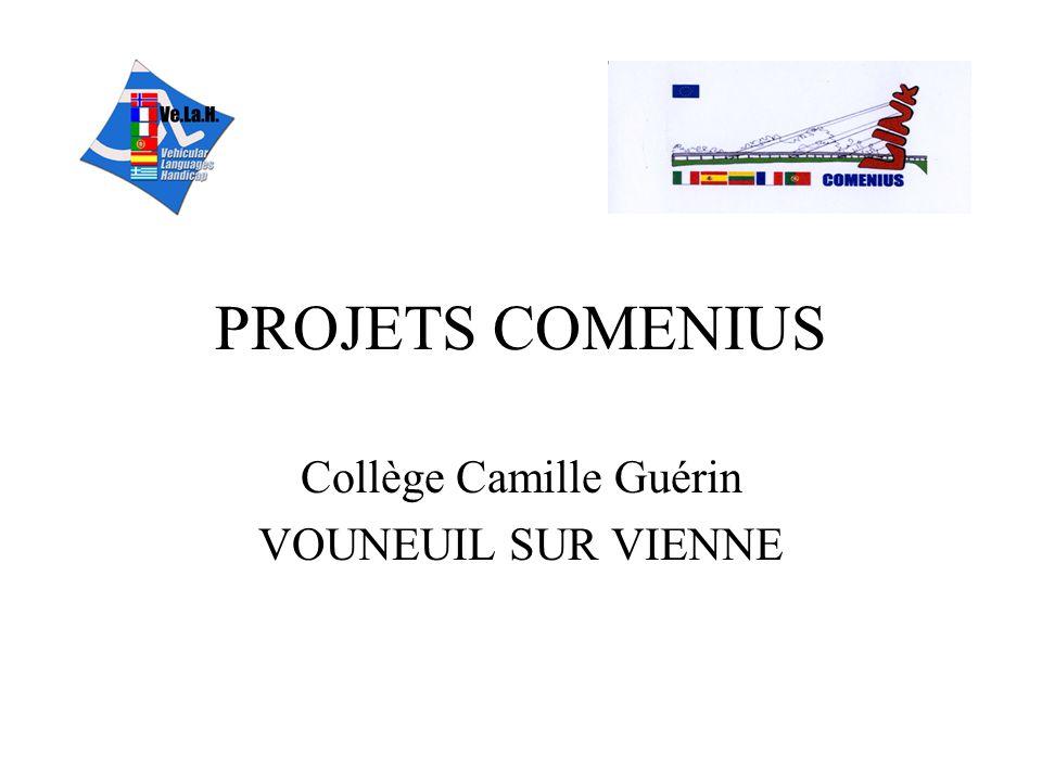 Collège Camille Guérin VOUNEUIL SUR VIENNE