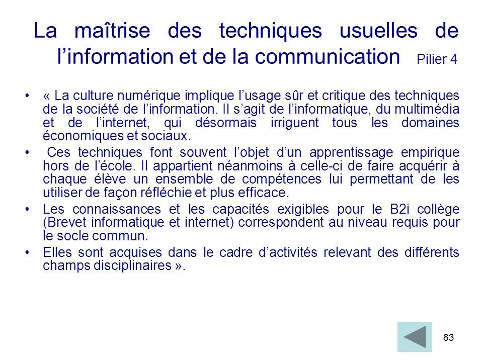 La maîtrise des techniques usuelles de l'information et de la communication Pilier 4