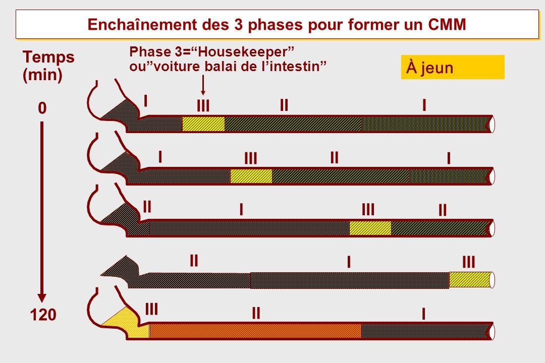 Enchaînement des 3 phases pour former un CMM