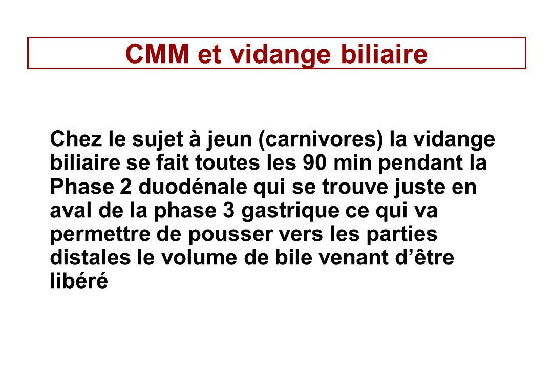 CMM et vidange biliaire