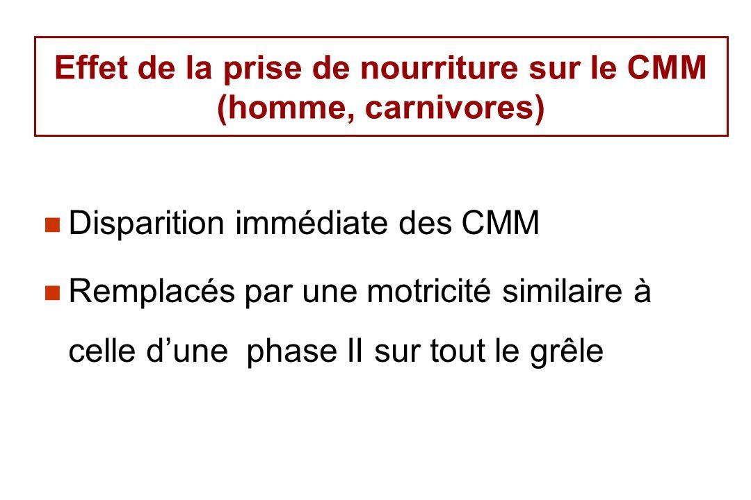 Effet de la prise de nourriture sur le CMM (homme, carnivores)