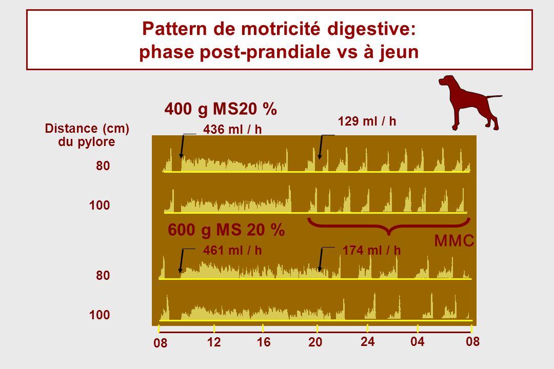 Pattern de motricité digestive: phase post-prandiale vs à jeun
