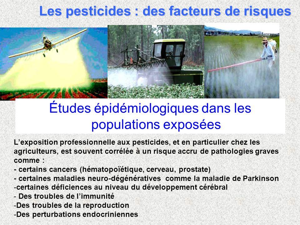 Études épidémiologiques dans les populations exposées