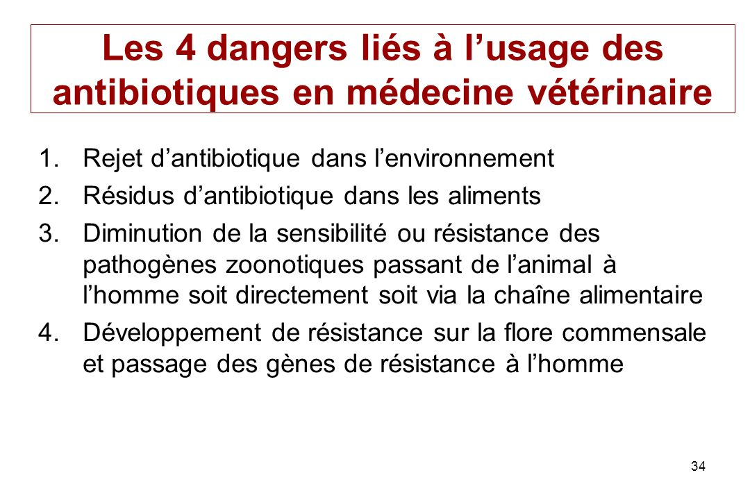 Les 4 dangers liés à l'usage des antibiotiques en médecine vétérinaire