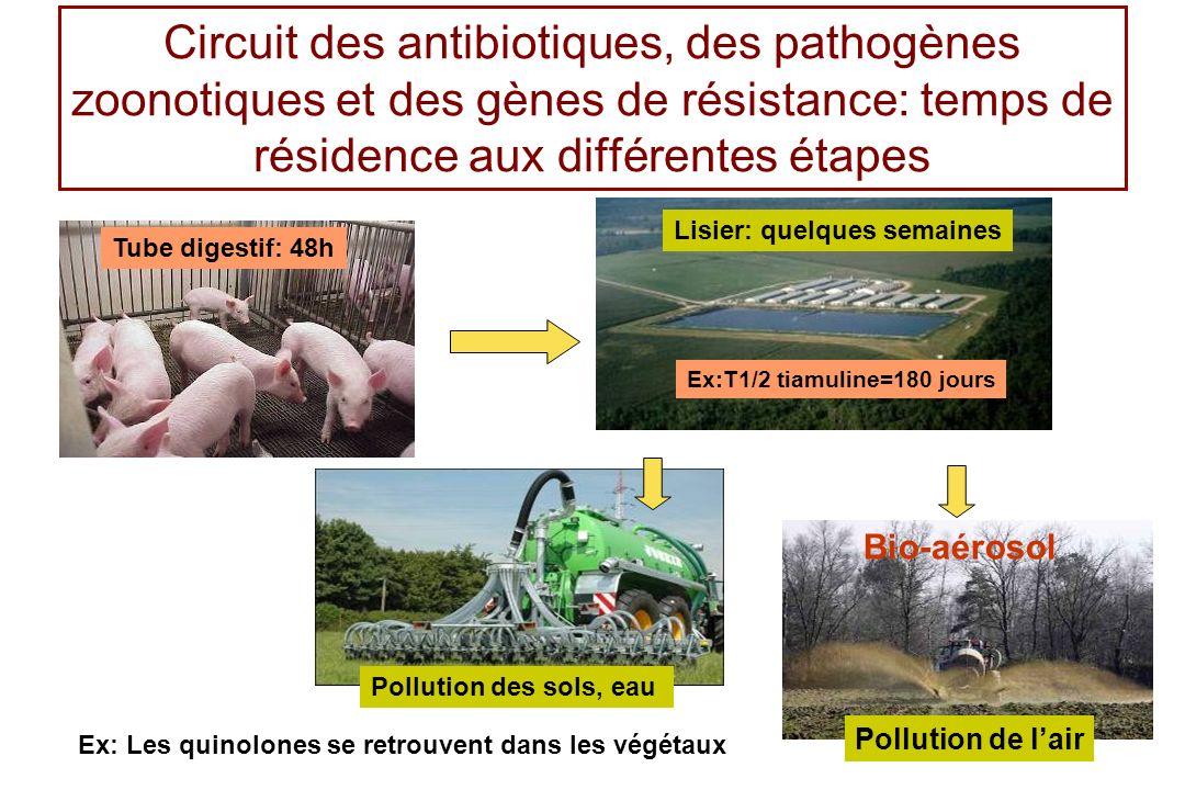 Circuit des antibiotiques, des pathogènes zoonotiques et des gènes de résistance: temps de résidence aux différentes étapes