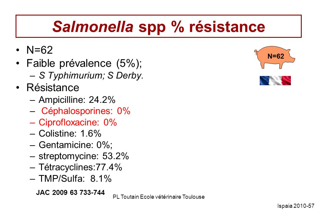 Salmonella spp % résistance