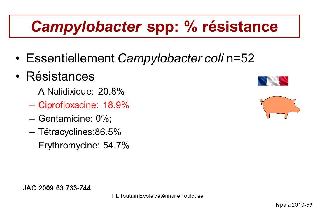 Campylobacter spp: % résistance