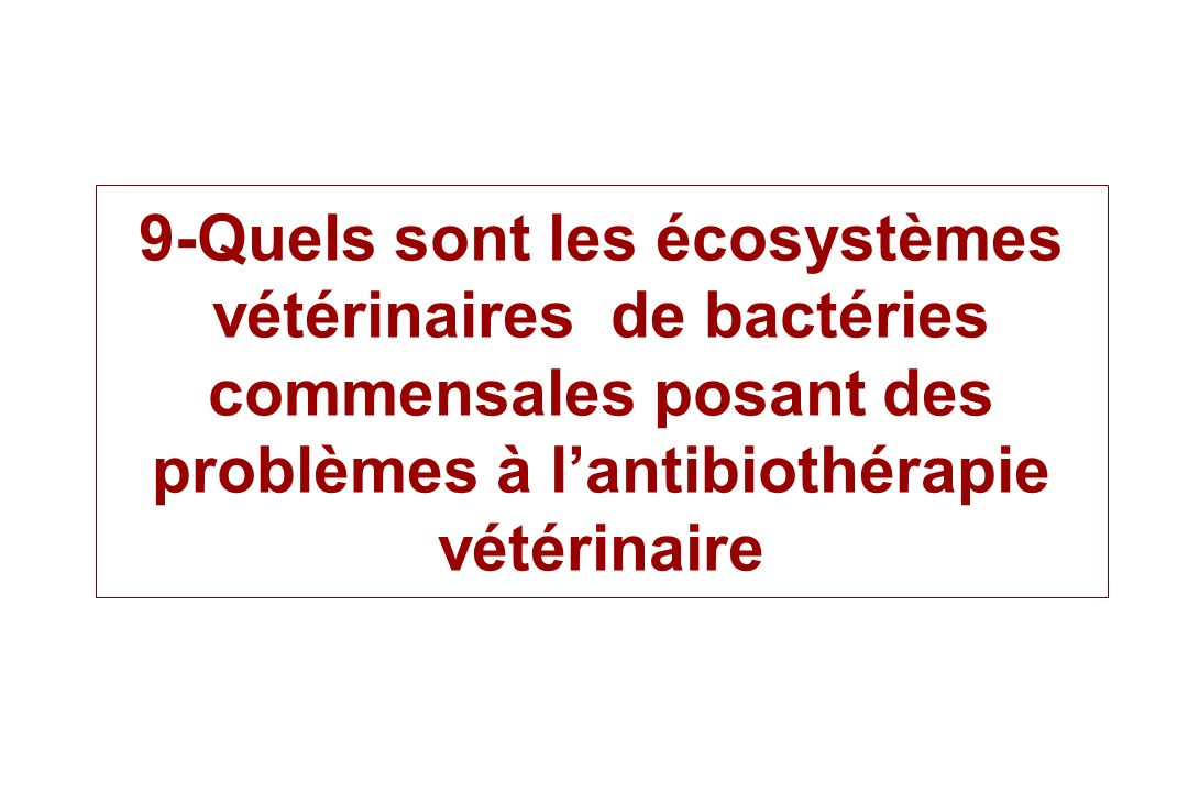 9-Quels sont les écosystèmes vétérinaires de bactéries commensales posant des problèmes à l'antibiothérapie vétérinaire