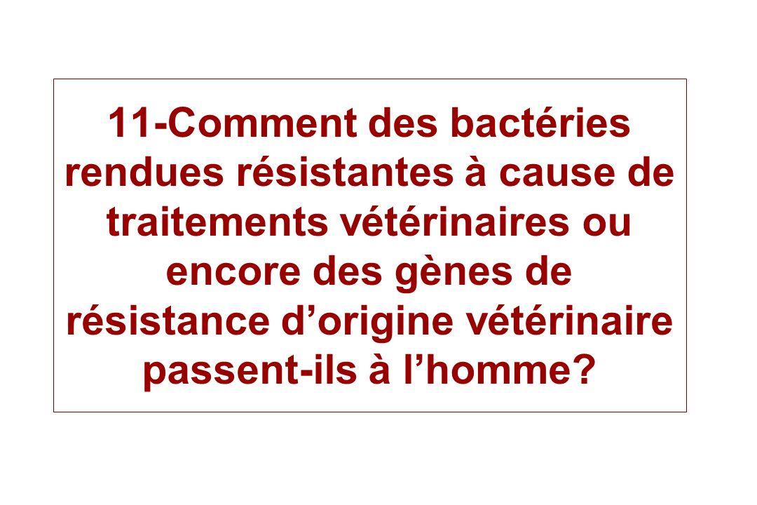 11-Comment des bactéries rendues résistantes à cause de traitements vétérinaires ou encore des gènes de résistance d'origine vétérinaire passent-ils à l'homme