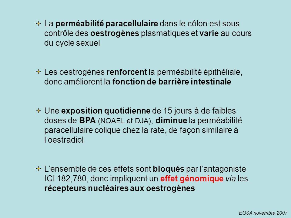 La perméabilité paracellulaire dans le côlon est sous contrôle des oestrogènes plasmatiques et varie au cours du cycle sexuel