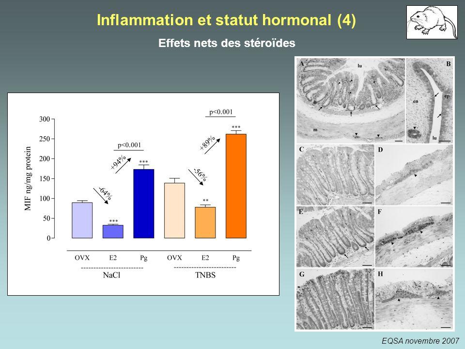 Inflammation et statut hormonal (4) Effets nets des stéroïdes
