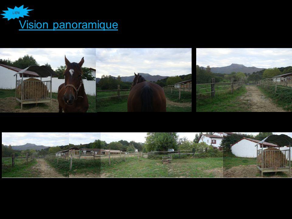 LIEN Vision panoramique