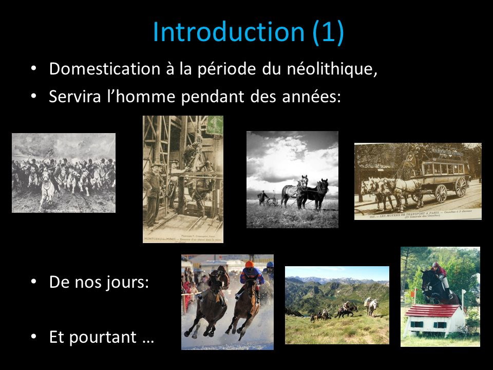 Introduction (1) Domestication à la période du néolithique,