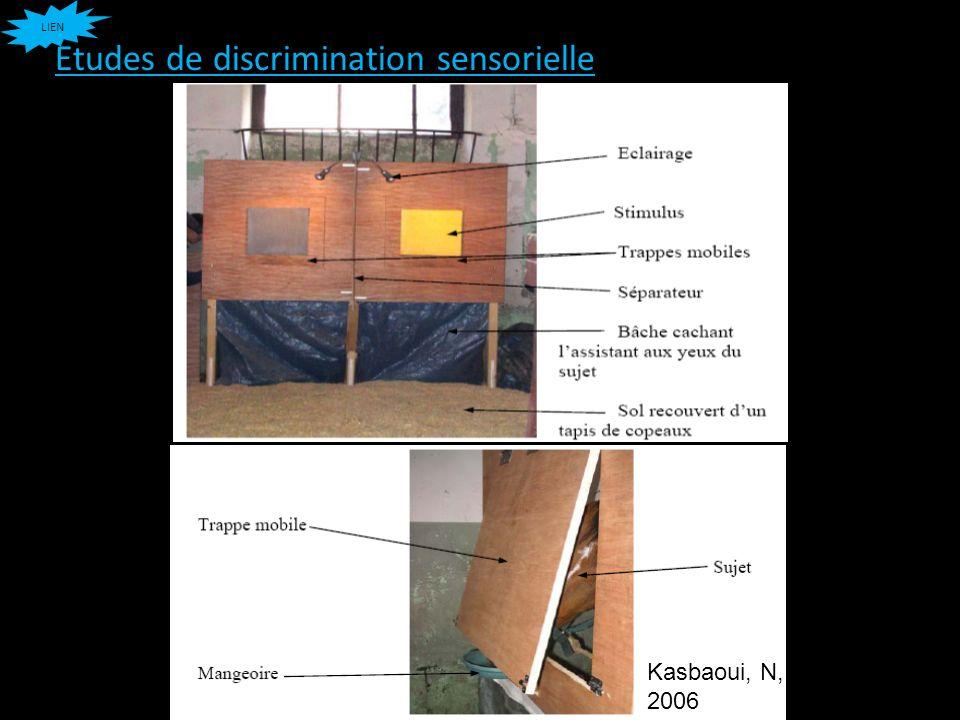 Etudes de discrimination sensorielle