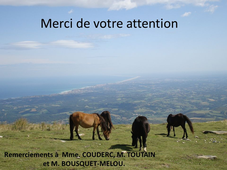Remerciements à Mme. COUDERC, M. TOUTAIN et M. BOUSQUET-MELOU.