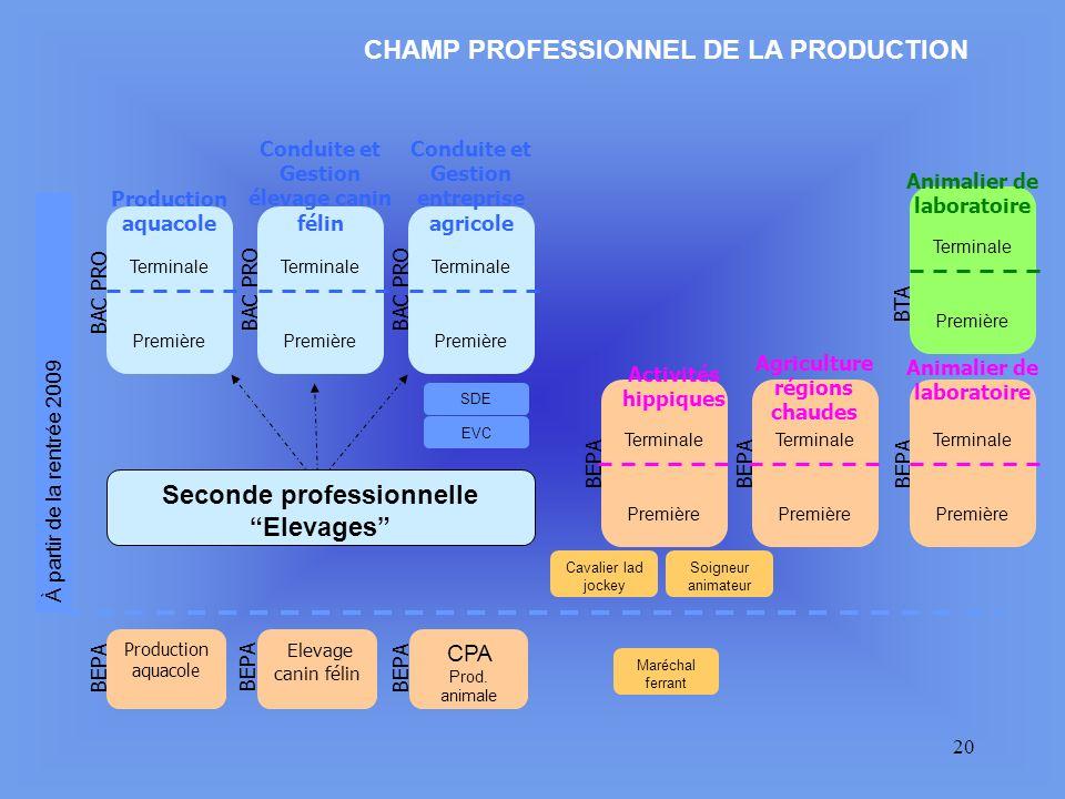 CHAMP PROFESSIONNEL DE LA PRODUCTION