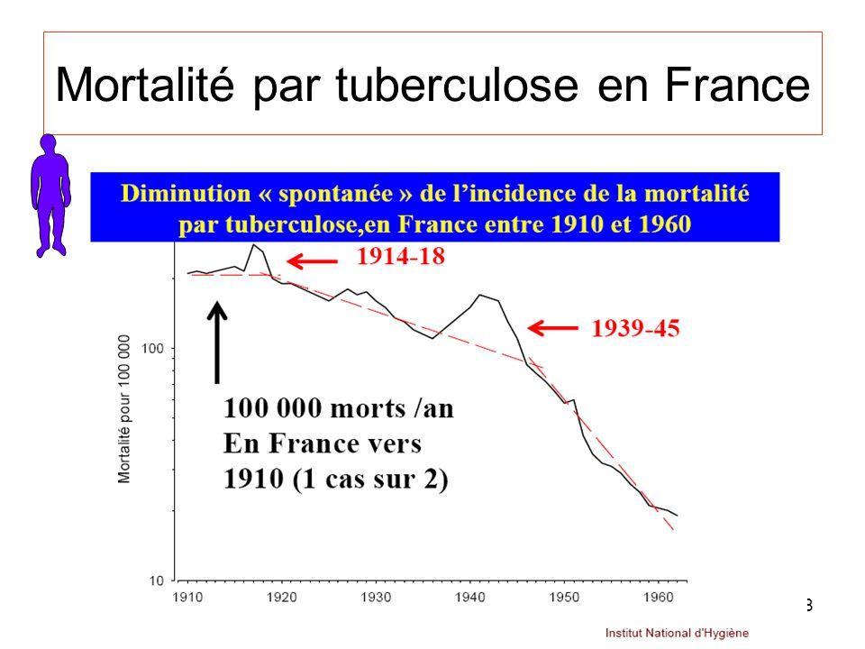 Mortalité par tuberculose en France