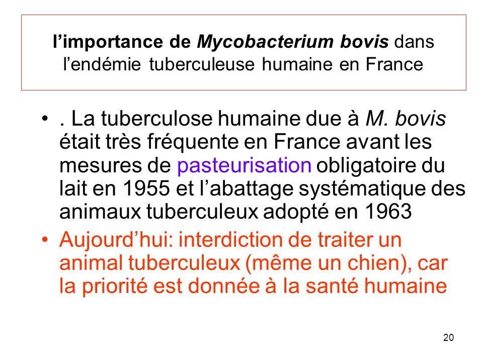 l'importance de Mycobacterium bovis dans l'endémie tuberculeuse humaine en France