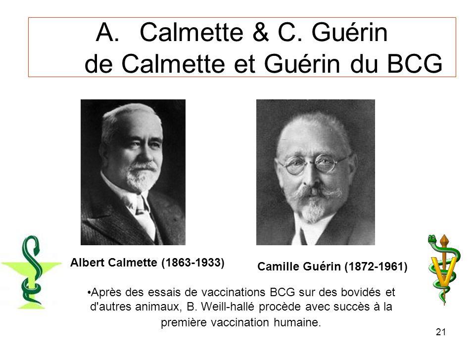 Calmette & C. Guérin de Calmette et Guérin du BCG