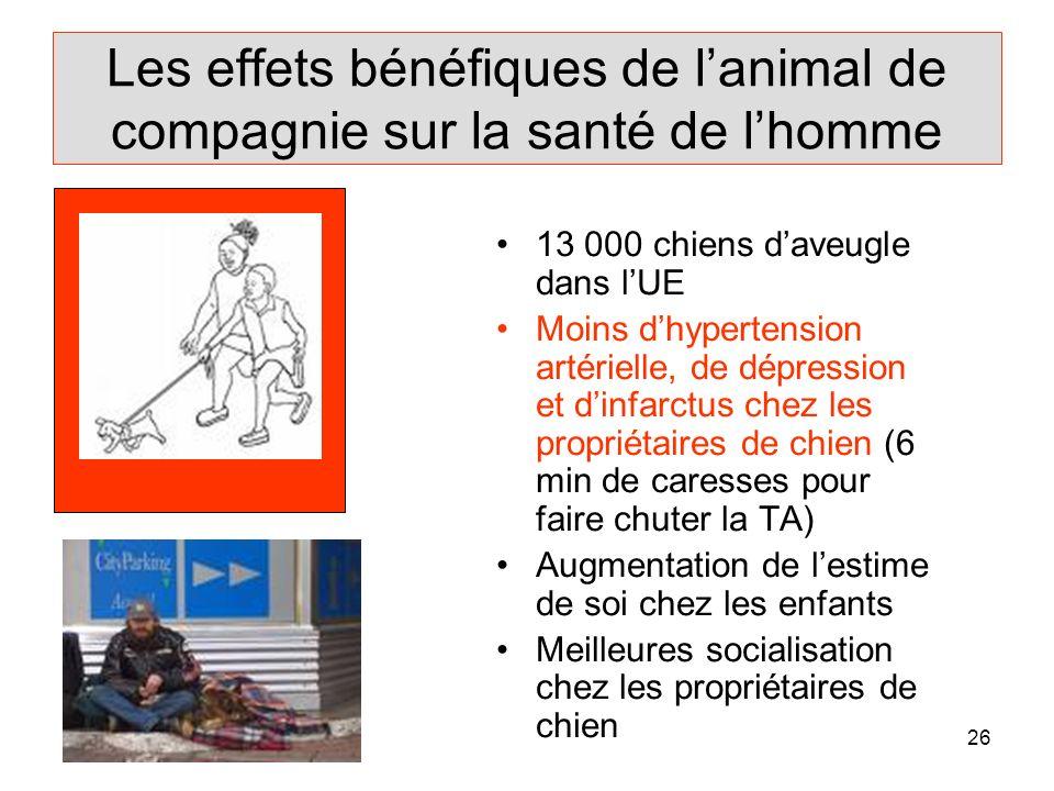Les effets bénéfiques de l'animal de compagnie sur la santé de l'homme