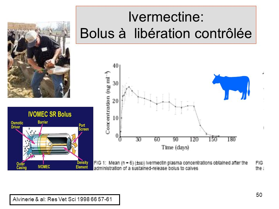 Ivermectine: Bolus à libération contrôlée