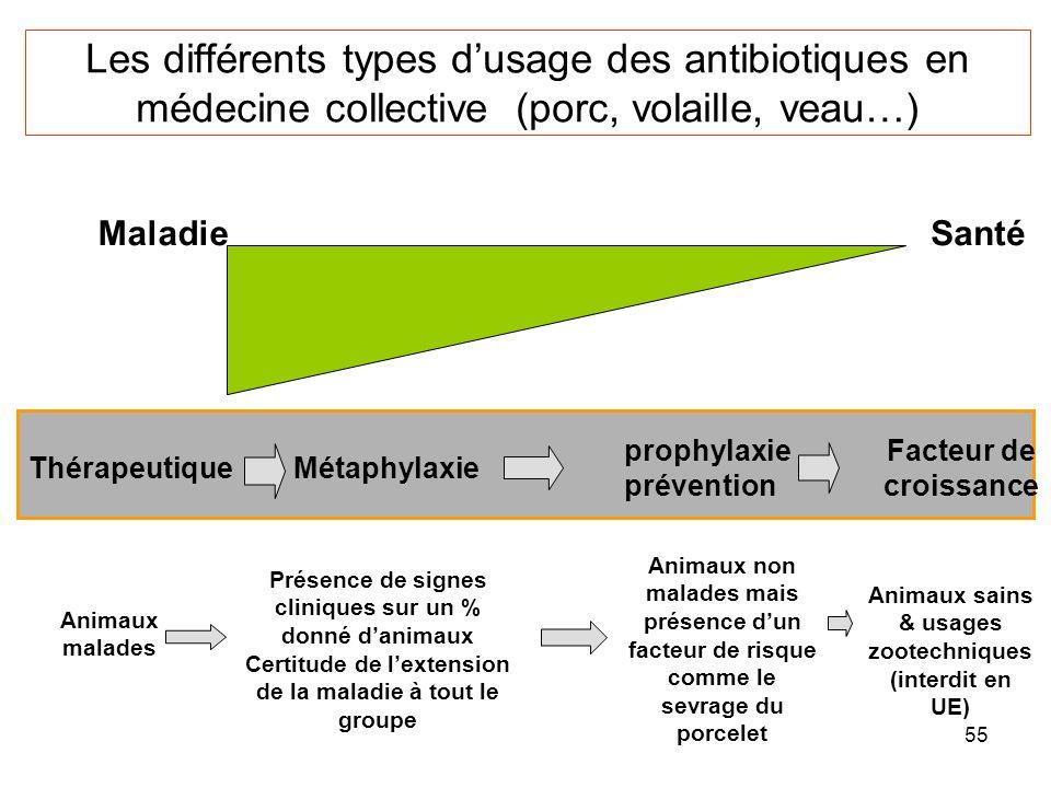 Les différents types d'usage des antibiotiques en médecine collective (porc, volaille, veau…)