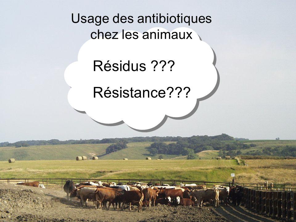 Usage des antibiotiques chez les animaux