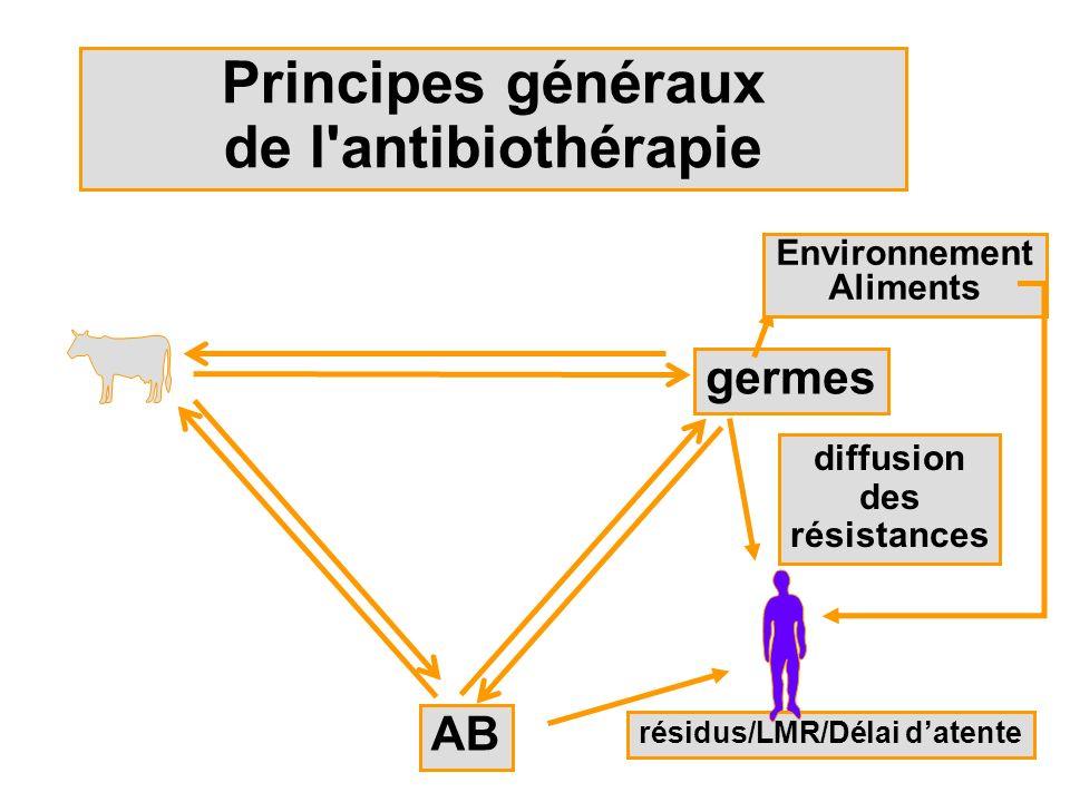 Principes généraux de l antibiothérapie