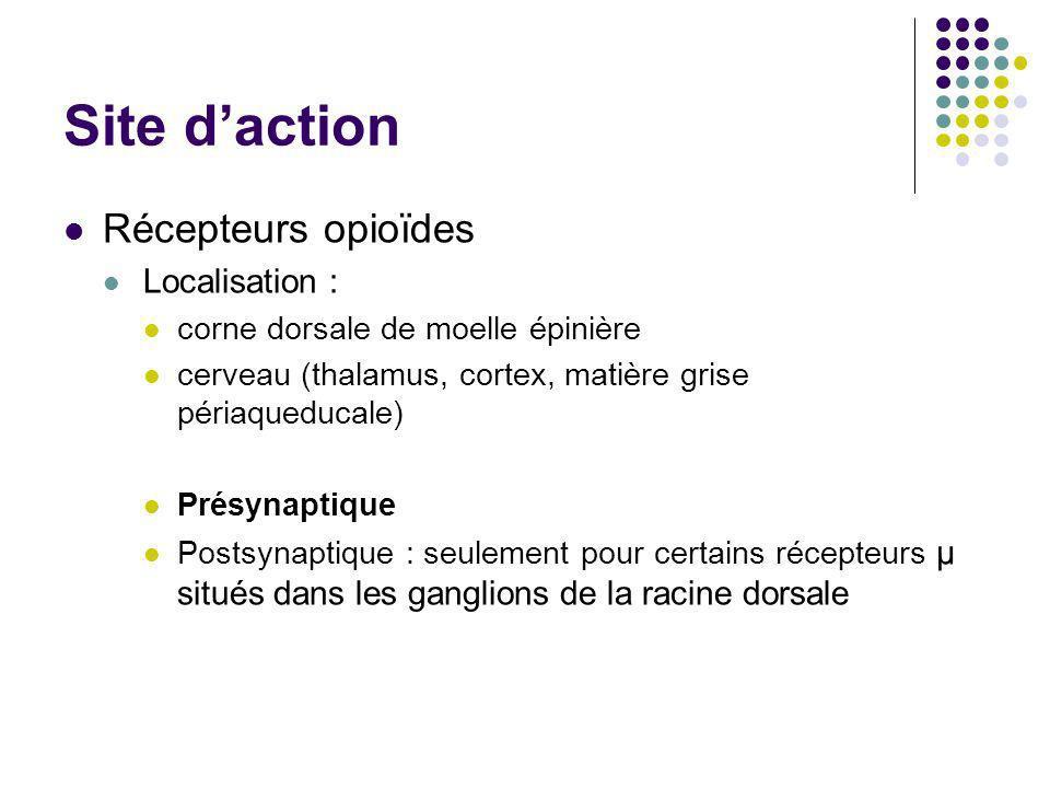 Site d'action Récepteurs opioïdes Localisation :