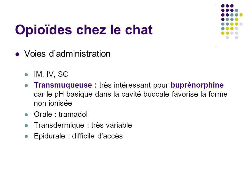 Opioïdes chez le chat Voies d'administration IM, IV, SC