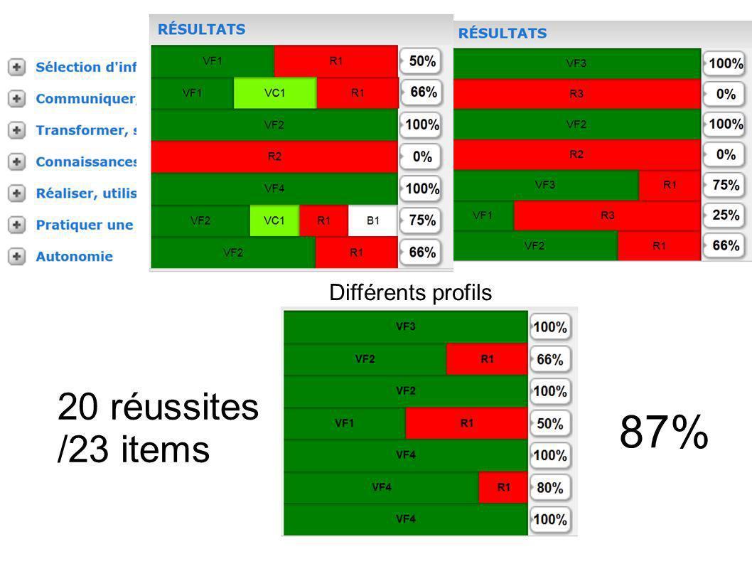 Différents profils 20 réussites /23 items 87% 8