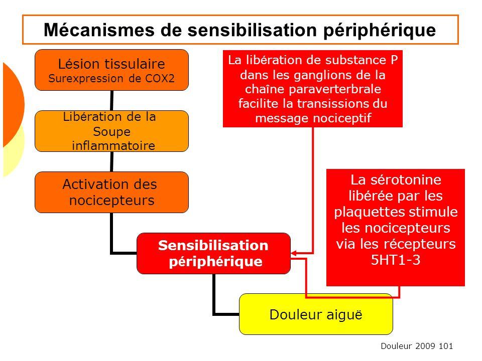 Mécanismes de sensibilisation périphérique