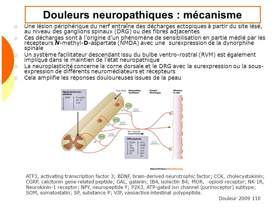 Douleurs neuropathiques : mécanisme
