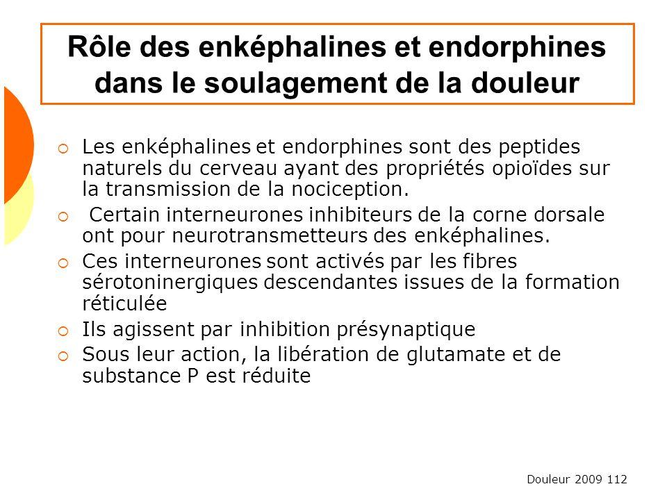 Rôle des enképhalines et endorphines dans le soulagement de la douleur