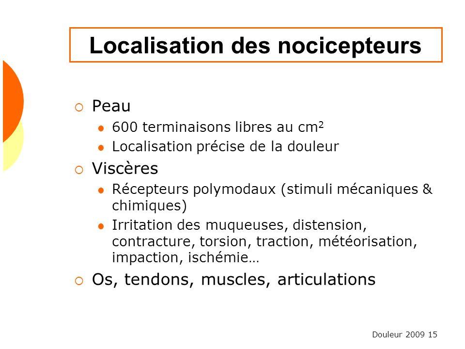 Localisation des nocicepteurs