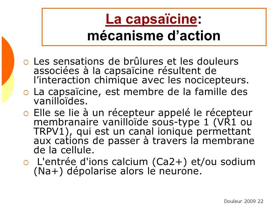 La capsaïcine: mécanisme d'action