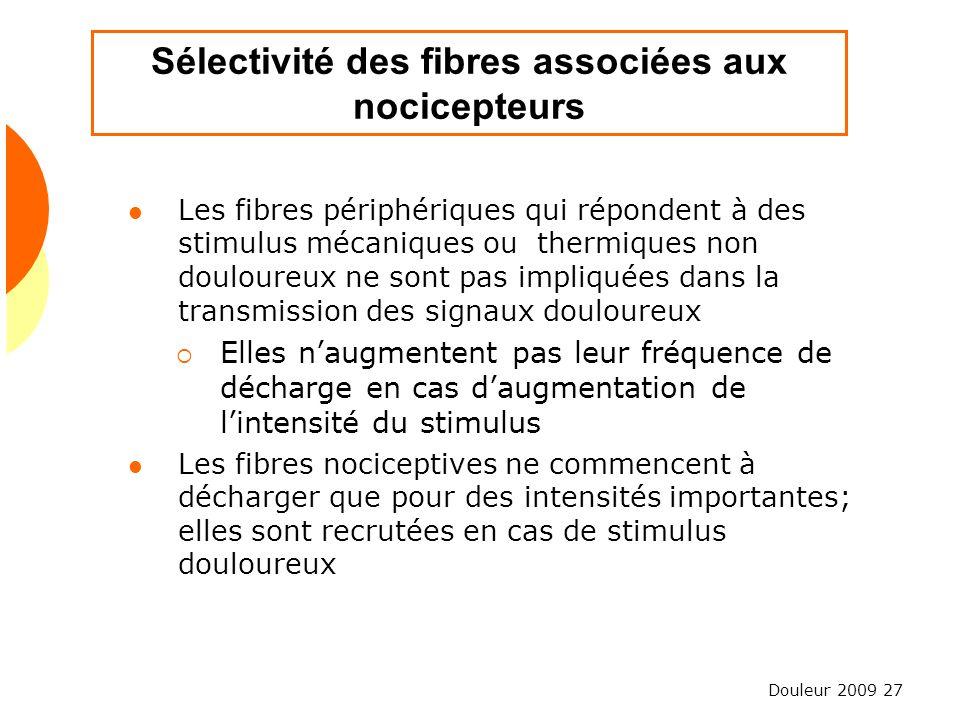 Sélectivité des fibres associées aux nocicepteurs