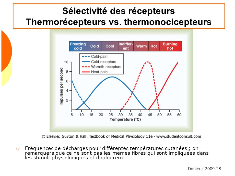 Sélectivité des récepteurs Thermorécepteurs vs. thermonocicepteurs