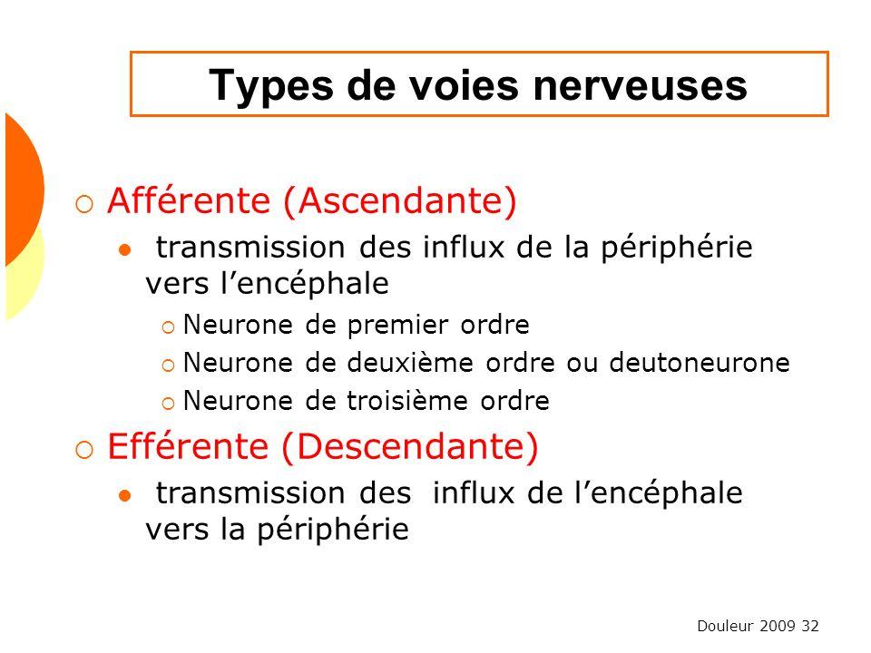Types de voies nerveuses
