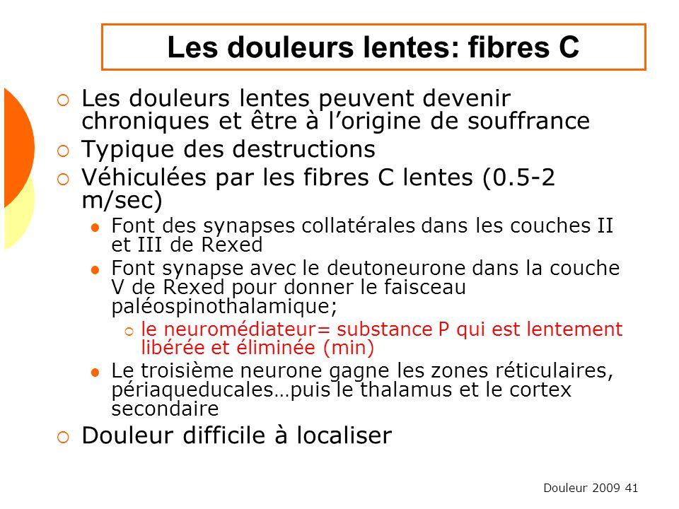Les douleurs lentes: fibres C