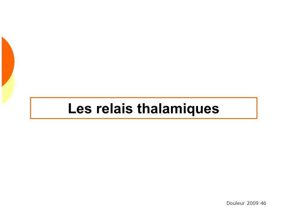 Les relais thalamiques