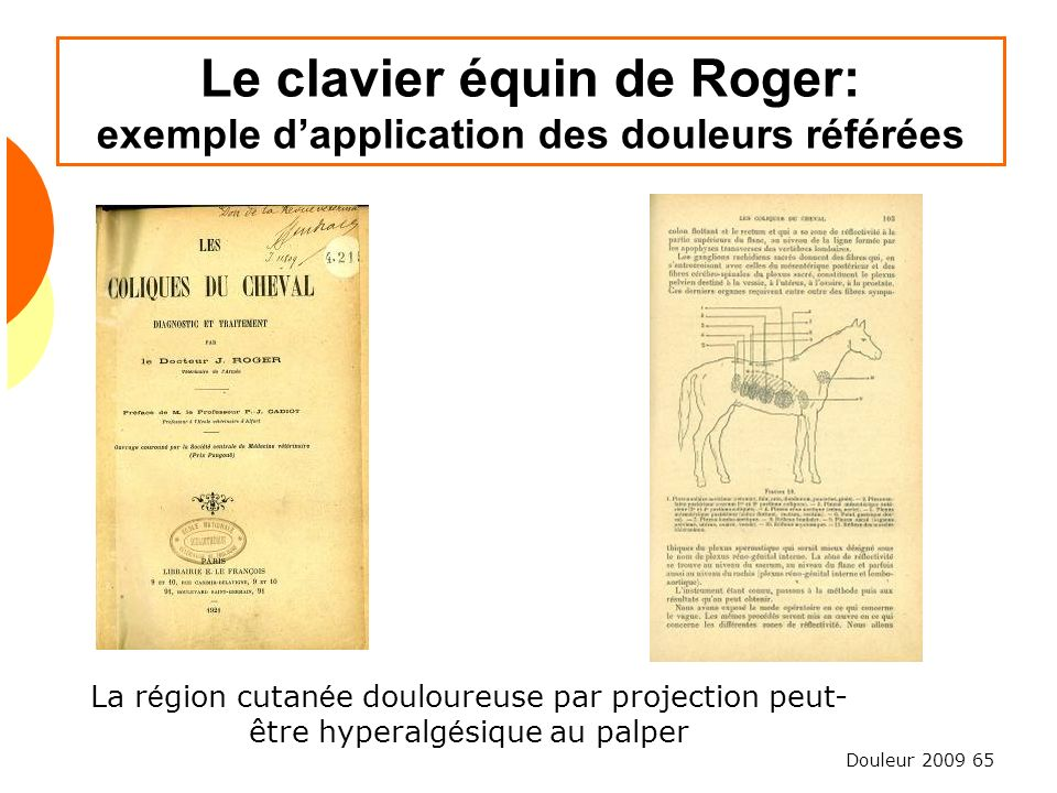 Le clavier équin de Roger: exemple d'application des douleurs référées