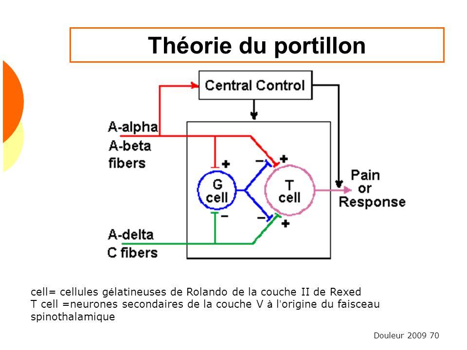 Théorie du portillon cell= cellules gélatineuses de Rolando de la couche II de Rexed.