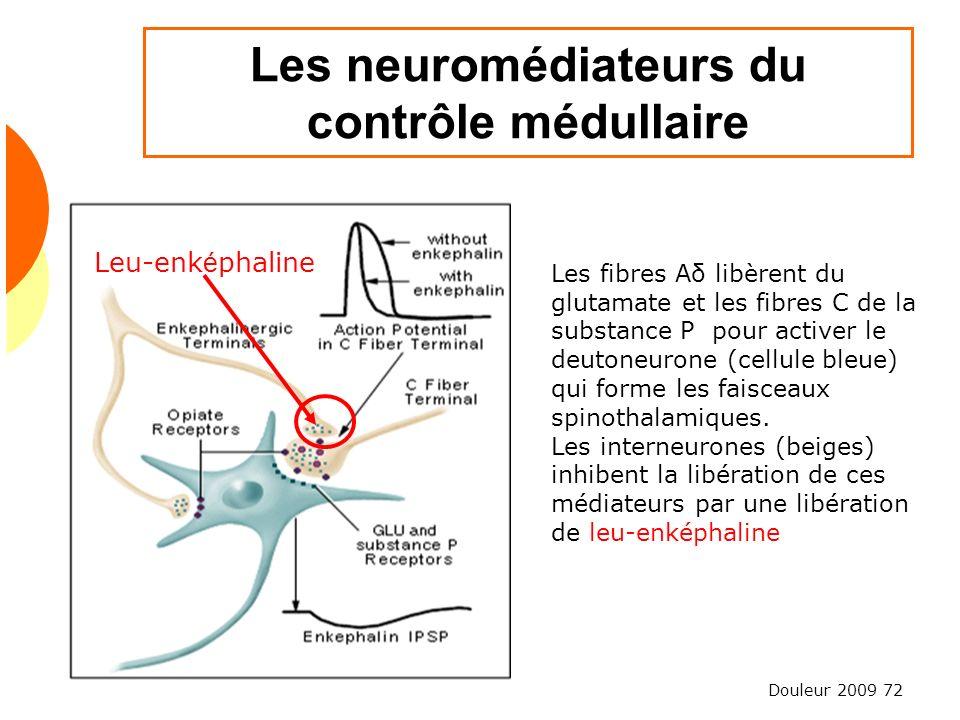 Les neuromédiateurs du contrôle médullaire
