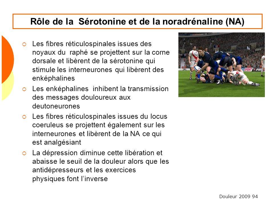 Rôle de la Sérotonine et de la noradrénaline (NA)