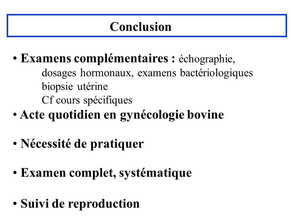 Examens complémentaires : échographie,